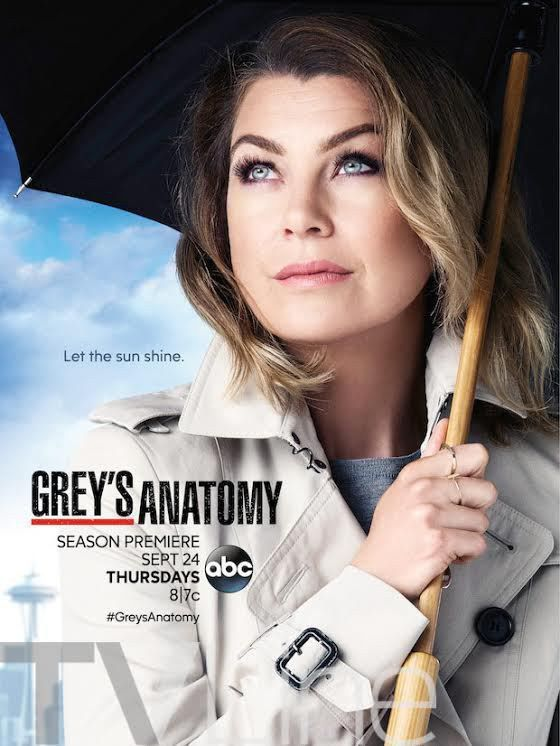 Grey's Anatomy: Meredith lindíssima no pôster da 12ª temporada - Minha Série