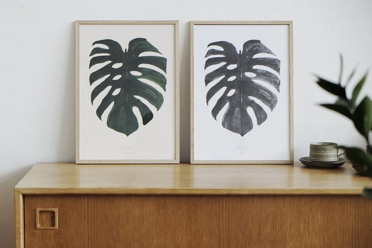 By Garmi Monstera Prints - picture from:  Blog | NODEN