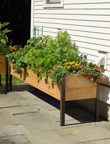 Elevated Cedar Planter Box, 2' x 8' (8587631) gardeners.com