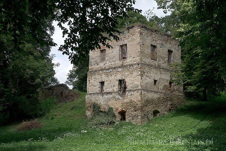 Ruiny zamku w Dąbrówce Starzeńskiej