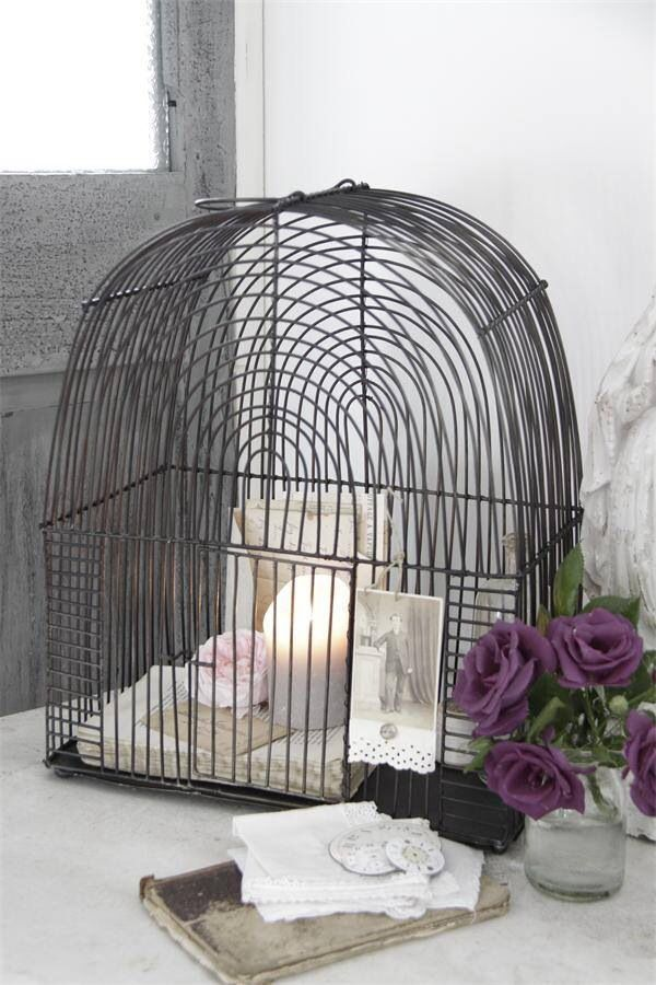 423 best ouvrez la cage aux oiseaux images on pinterest for Cage a oiseaux decorative