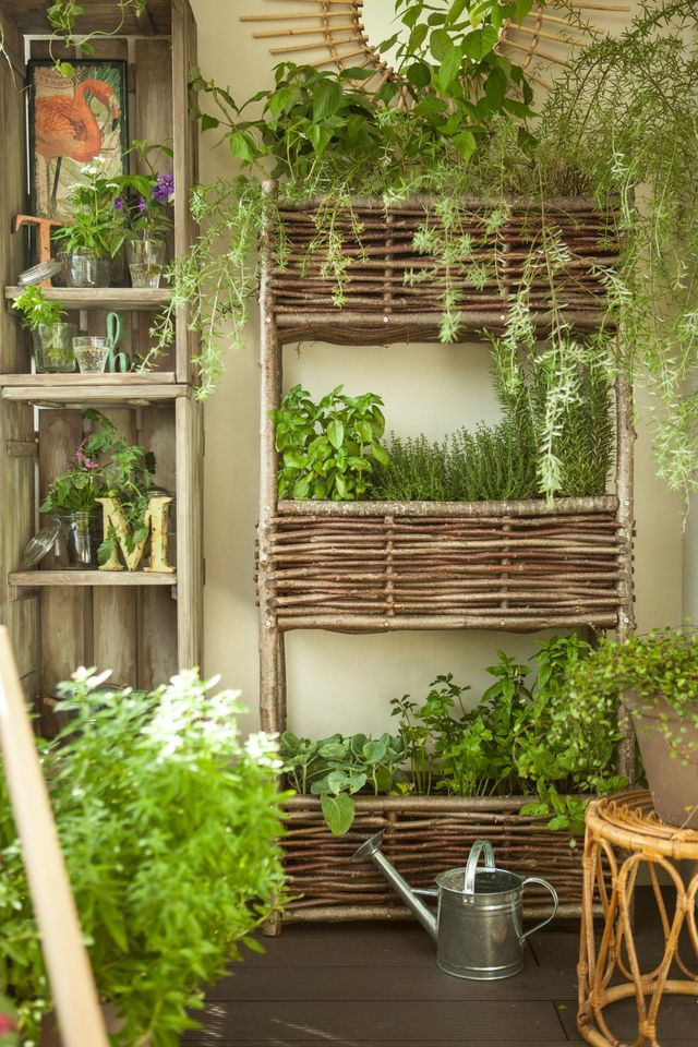 312 best images about herbs and herb garden on pinterest for Pallet leroy merlin
