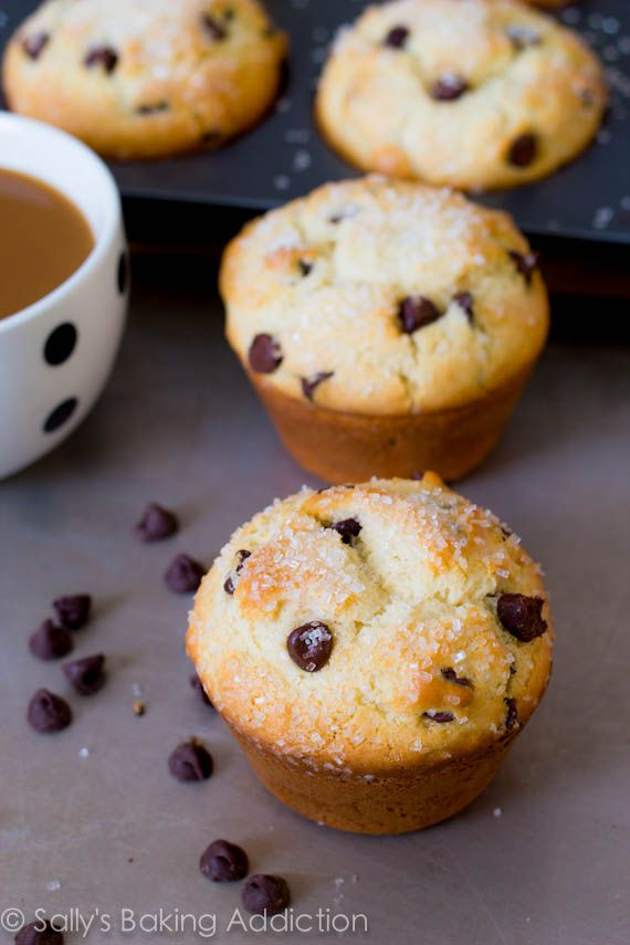 """Bakery Style Chocolate Chip Muffins (Sallys Baking Addiction). """"You ..."""
