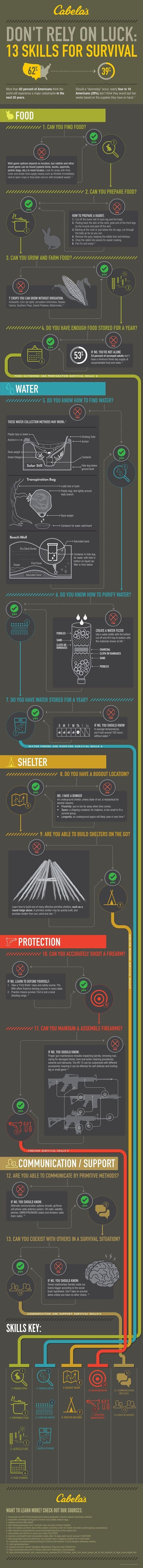13 Top Survival Skills | Learn Now, Survive Later | Doomsday Prepping For Beginners Or Seasoned Prepper by Survival Life at http://survivallife.com/2015/12/09/survival-skills-infographic/: #ad