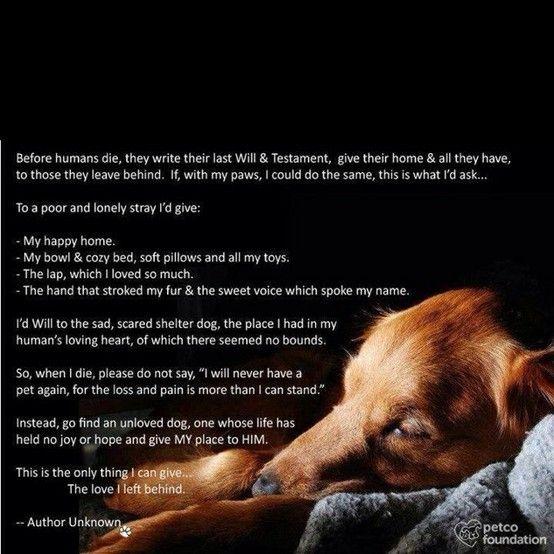 Love this...rescue rescue rescue