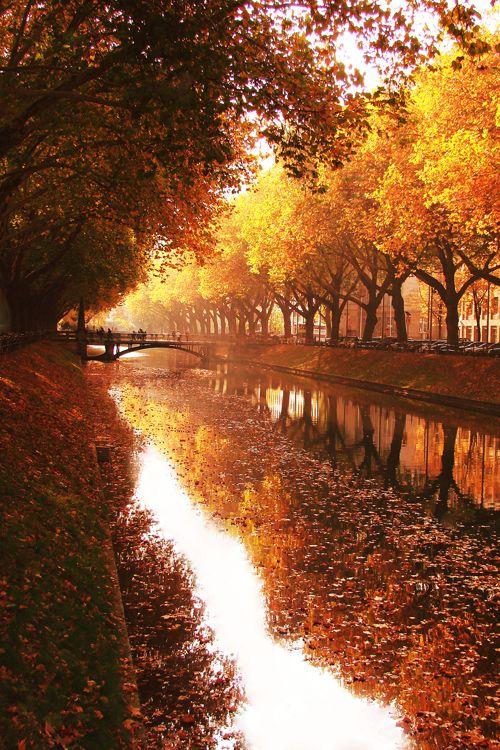 """Een speciale atmosfeer:bladeren beginnen te gloeien in elke denkbare tint van rood en geel. Dit is nu  de beroemde """"Indian Summer""""!"""