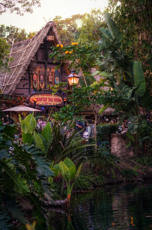 A Tropical Hideaway I can't help but hum the chorus to Walt Disney's Enchanted Tiki Room as I sit here thinking of something interesting