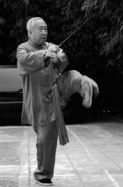 17 Best images about Wu style Tai Chi on Pinterest