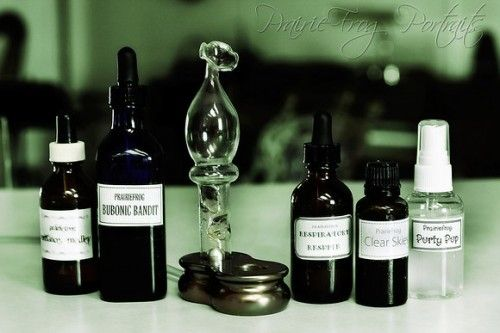 Bubonic Bandit Essential Oil Recipe – Inspired by Four Thieves » The Homestead Survival