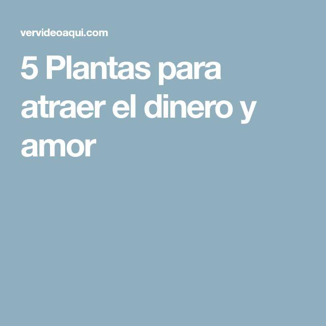 5 Plantas para atraer el dinero y amor