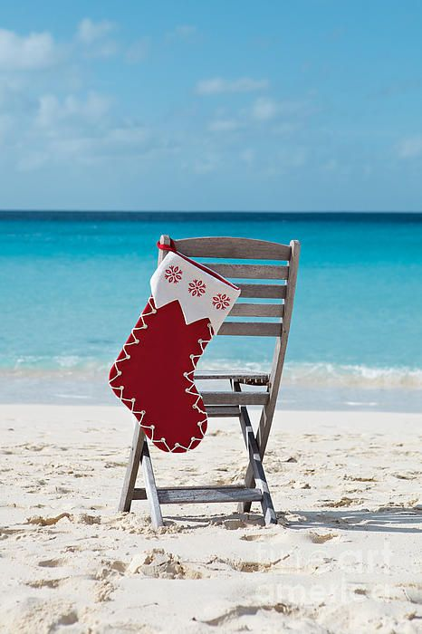 Caribbean Christmas by Kim Fearheiley with Pin-It-Button on FineArtAmerica