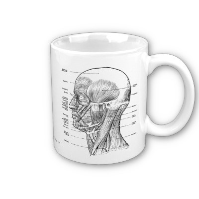 Vintage - Human Anatomy Muscles (Face, Head, Neck) Coffee Mug