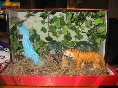 making animals for diorama | ... diorama of an animal in its habitat. Brad chose the Sumatran Tiger