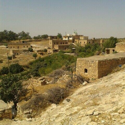 Mardin Bagözü köyü.