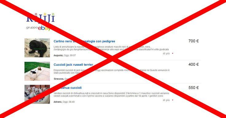 Que eBay prohíba los anuncios de venta de animales FIRMA Y COMPARTE ESTA PETICIÓN AHORA!