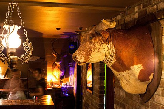 Shady Pines - cool Sydney bars - Darlinghurst sydney
