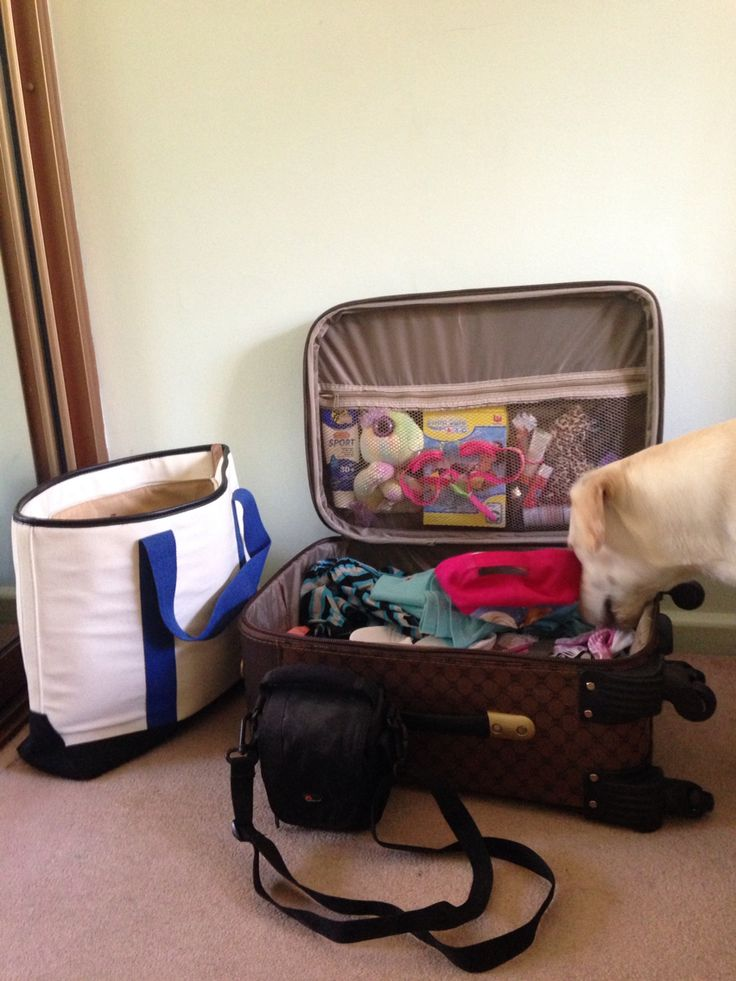 Packing for next week so excited! 5 star hotel baby LOL