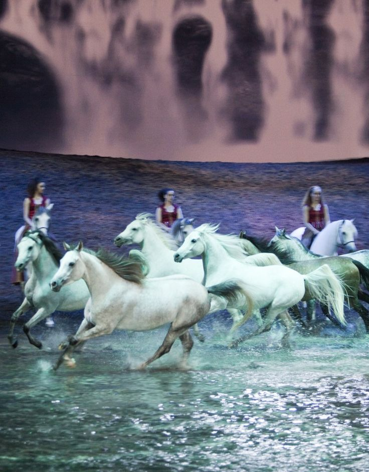 Odysseo - Cavalia Extravaganza Horse Shows & Performances Learn about #HorseHealth #HorseColic www.loveyour.horse