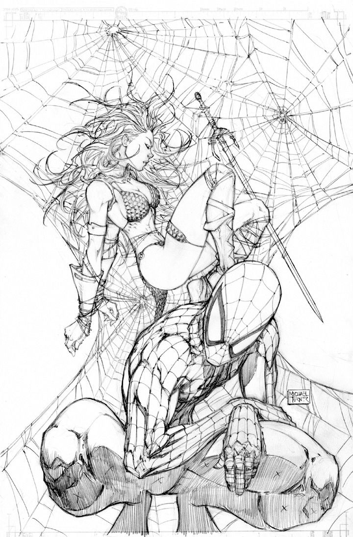 Spider-Man & Red Sonja by Michael Turner