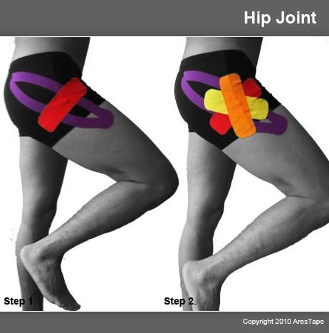 3_hip_joint
