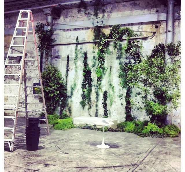 Grandiflora green wall