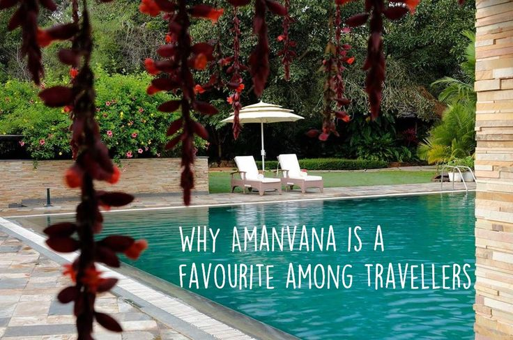 If you're #travelling to #Coorg, prefer quiet, soulful places, and can't resist a river, Amanvana #CoorgResort is the perfect place for you. http://amanvanaspa.com/coorg-resorts/why-amanvana-is-a-favourite-among-travellers/