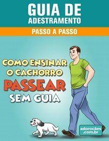 Guia de Adestramento - Como Ensinar o Cachorro Passear Sem Guia