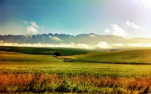Instagram picture by @Kirsty Tucker of the road to Bonnievale in the Western Cape South Africa.