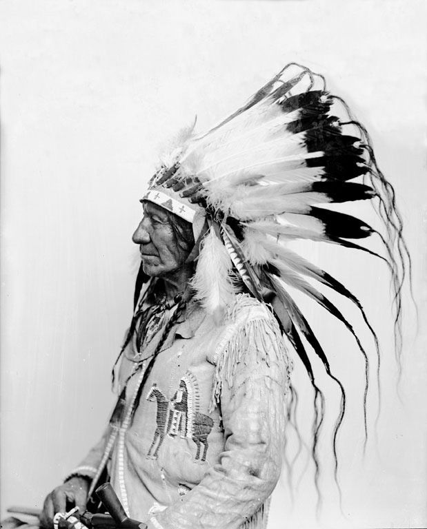 American Horse - Oglala 1880 ~ One of the wittiest and shrewdest of the Sioux chiefs was American Horse, who succeeded to the name and position of an uncle, killed in the battle of Slim Buttes in 1876.