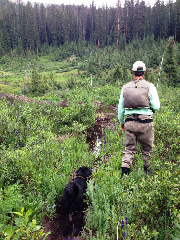 Man and his dog flyfishing crestedbutte brushcreek for Crested butte fishing