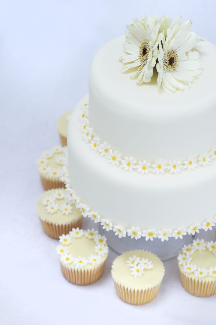Daisy wedding cake and cupcakes decorated with sugarpaste daisies and fresh gerberas