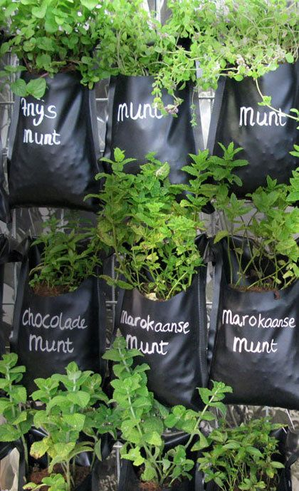 love this idea of growing herbs- Hemp pockets would be cool, and you could compost them when finished.