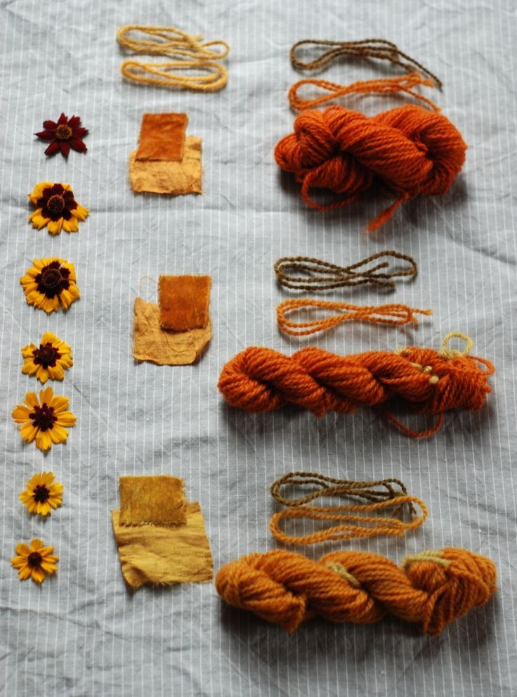 Natural Dye From Plants Dandelion Flowers Natural