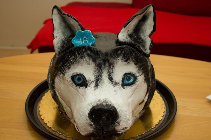Husky cake