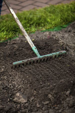 Learn the step by step process of planting grass seed.