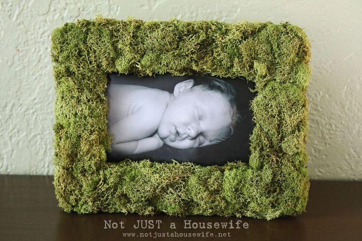 Mossy, woodland themed nursery frame