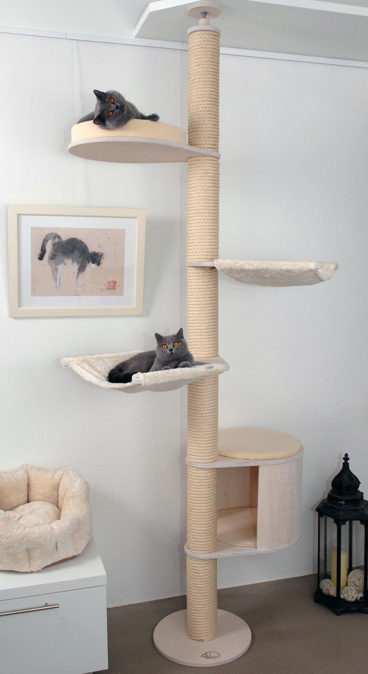32 best images about cat trees kratzbaum on pinterest. Black Bedroom Furniture Sets. Home Design Ideas