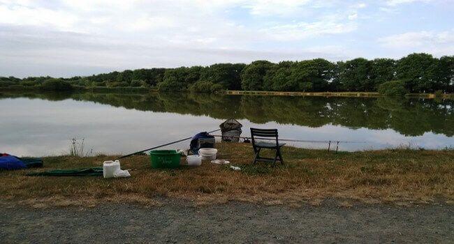 la pêche au feeder en étang quelques conseils