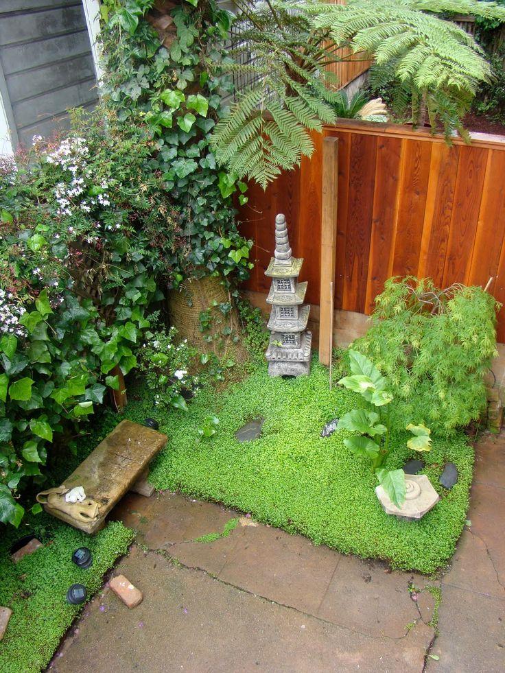 Miniature Japanese Zen Garden Design Photograph