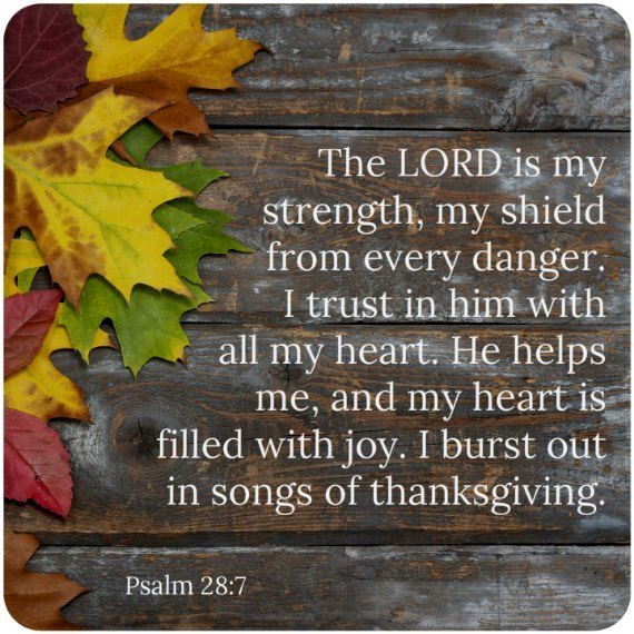 Best Thanksgiving Quotes From Bible: 64 Best THANKSGIVING Images On Pinterest