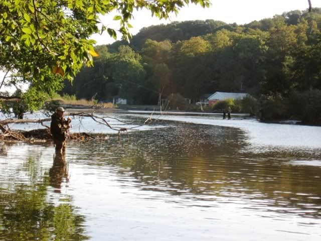 48 best images about wv oh md and pa trout streams on for Fly fishing ohio