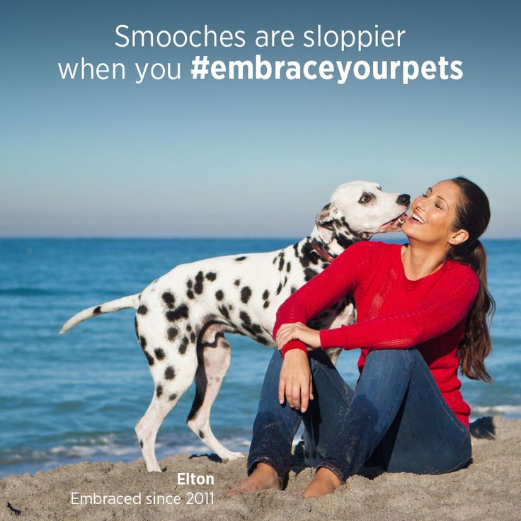 Find out how life gets better when you #embraceyourpets with Embrace Pet Insurance! Get your free quote today.