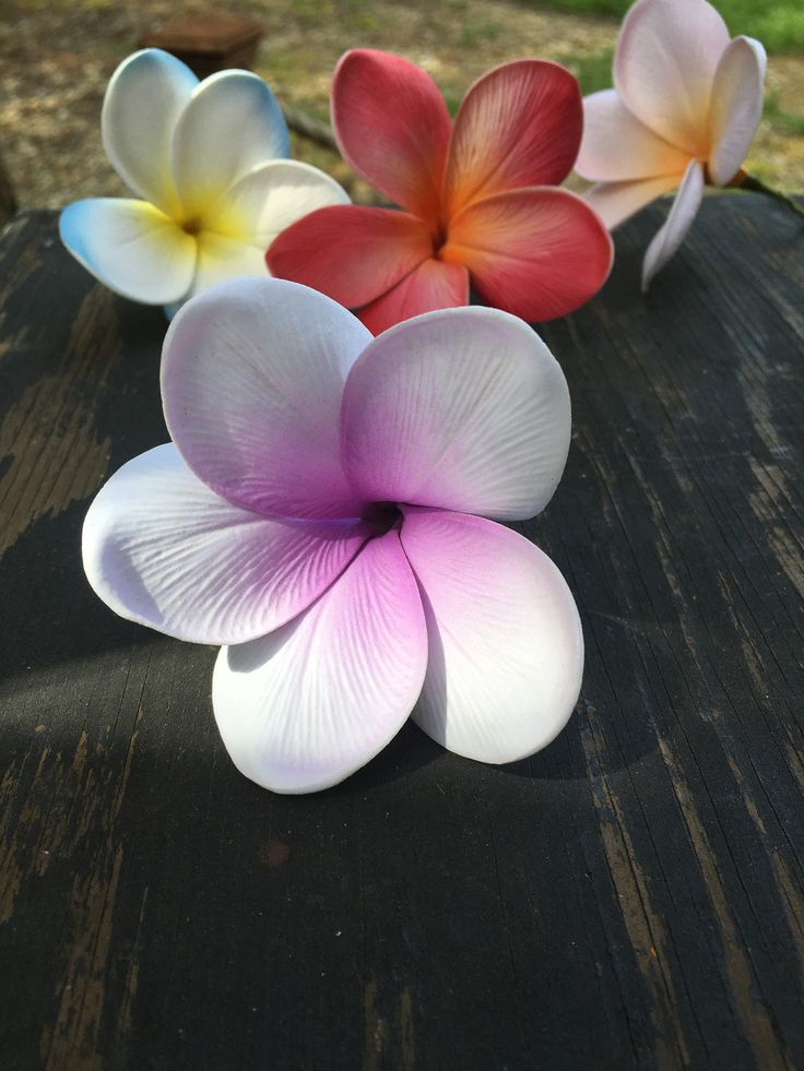 CLEARANCE Real Touch Plumeria Flower Pick