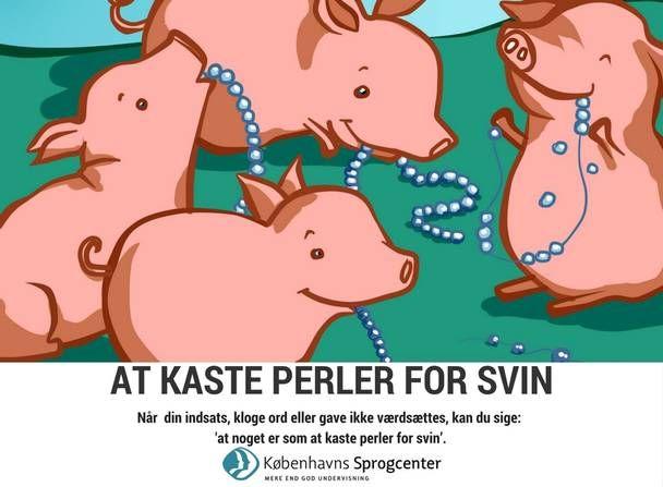 At kaste perler for svin ordsprog Københavns Sprogcenter