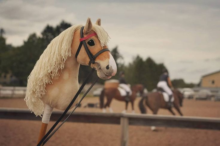 Epn Isabela A Hobbyhorse By Eponi Stickhorse Horse Keppihevonen Hor Hobby Horse Equitation Breyer Pferde Schonste Pferde Stockpferde