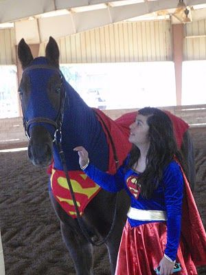 Horse Fancy Dress Ideas: Superhorse