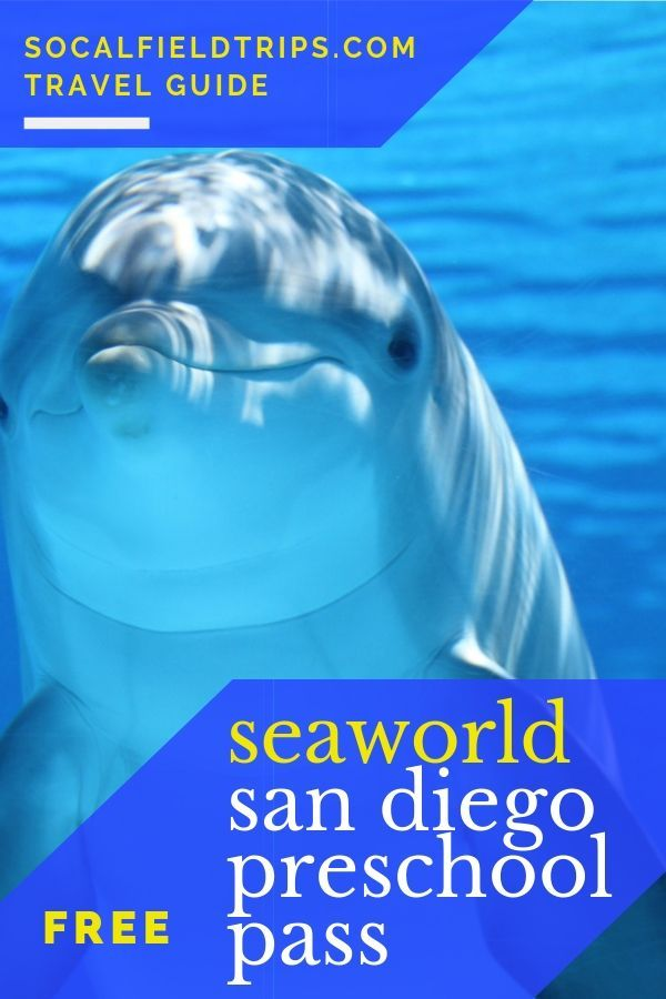 Seaworld San Diego Is Delighted To Offer A Free 2019 Seaworld Preschool Fun Card To The First 10 000 Registered Pr Seaworld San Diego Visit San Diego San Diego