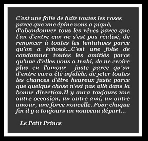 La folie des hommes vue par le petit prince... Antoine de Saint Exupery