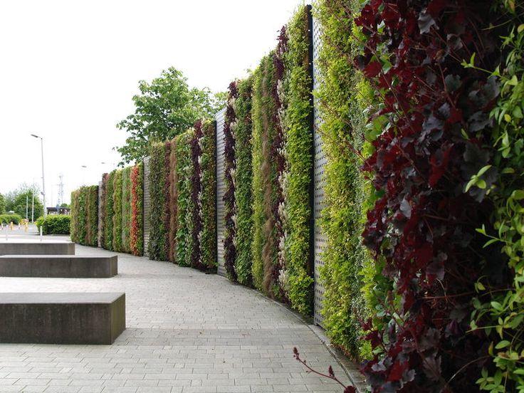 Muros verdes jardines pinterest muros muros verdes for Muros y fachadas verdes jardines verticales
