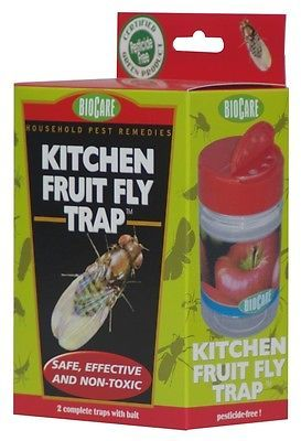 Springstar S415 Kitchen Fruit Fly Trap